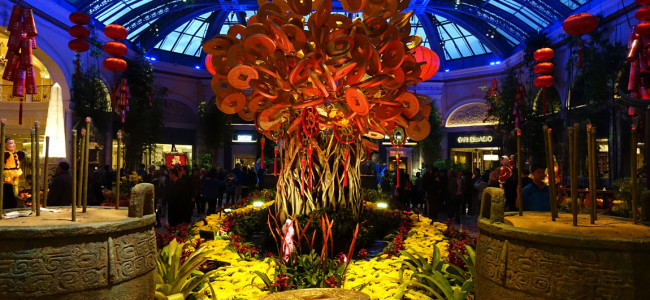 Celebrating The Year of The Horse at The Bellagio Conservatory