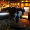 Chayo The Bull